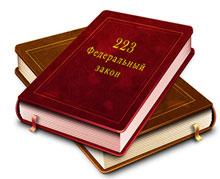 Закупки по 223 - ФЗ: что нужно знать?